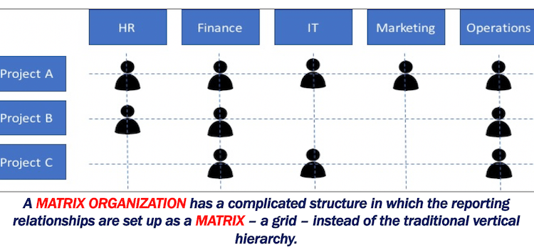 Matrix_Organization_Structure