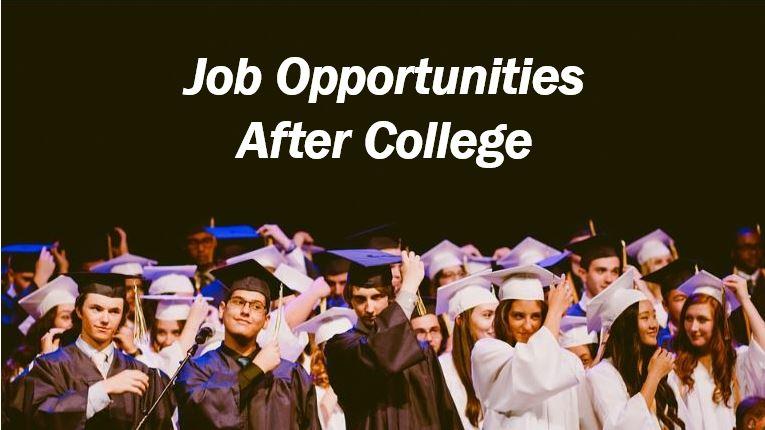 First job after college rrr