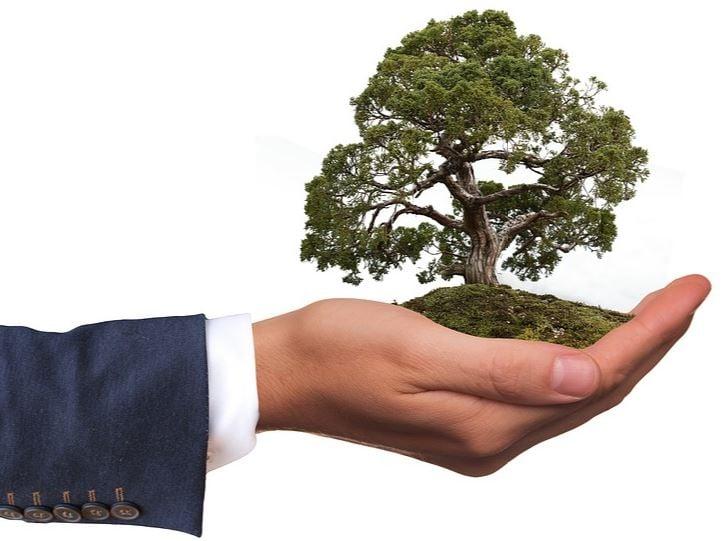 Millennial entrepreneurs eco-minded image 1111