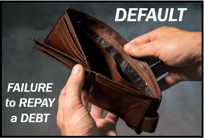 Default image - fail to pay a debt 8498948