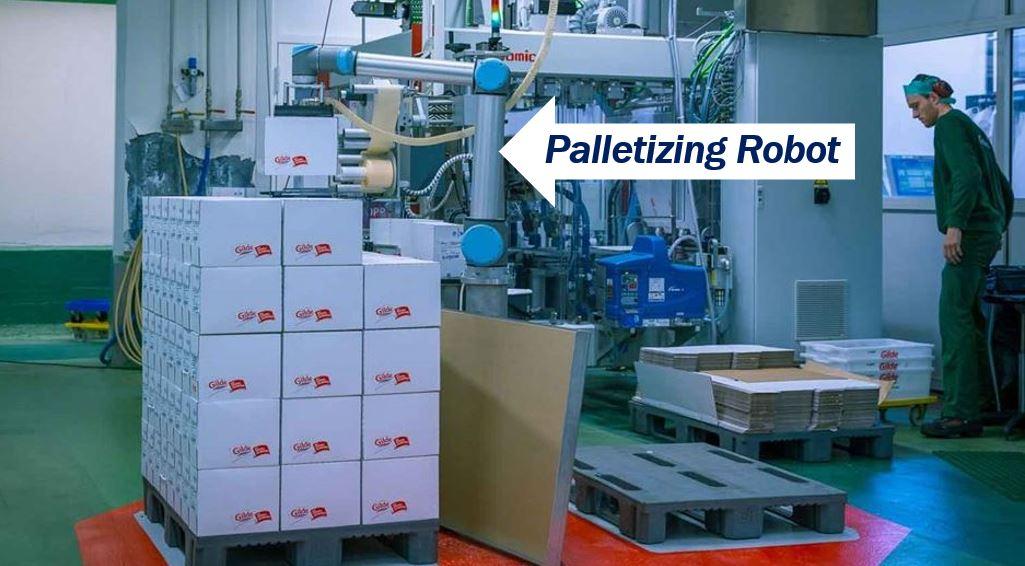 Palletizing robot image 778478478748