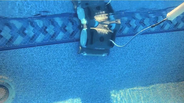 Dolphin robots image 333