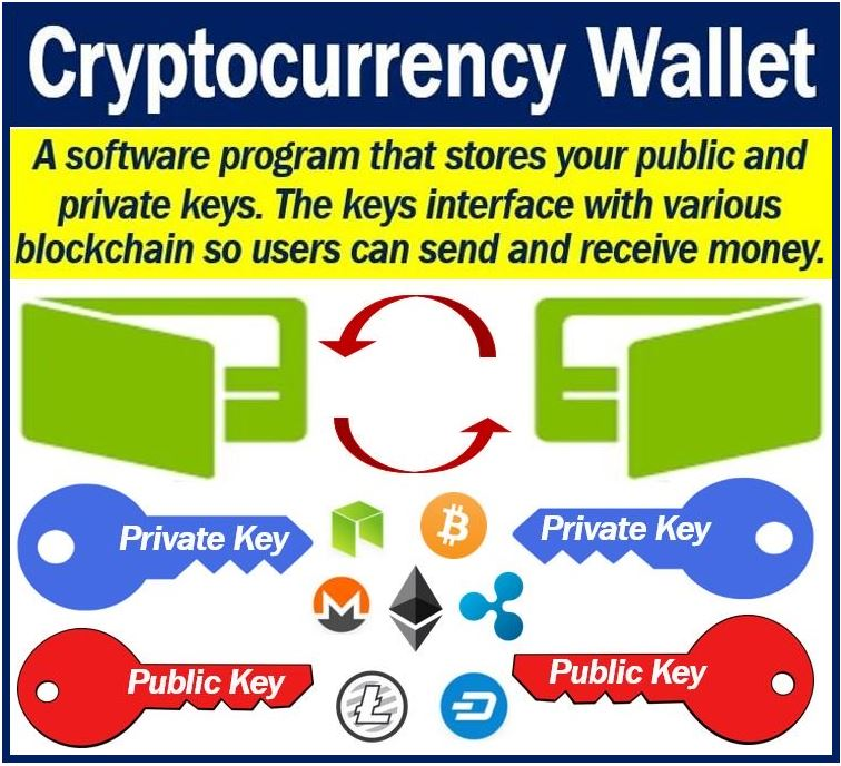 which cryptocurrency wallet is best for you