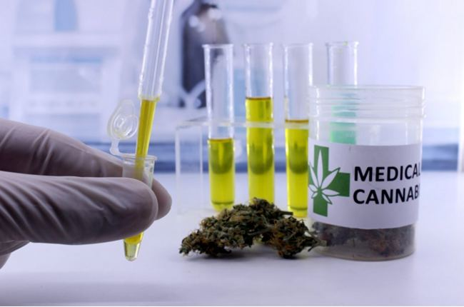 7 Benefits of CBD Oil Tincture in 2021- Complete Guide for Beginners
