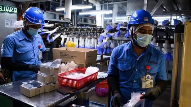 โรงงานถุงมือมาเล 2