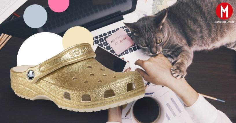 croc Open