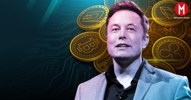 Elon Musk Open