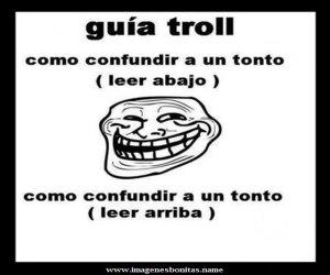 Guía Troll