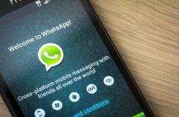 Así puedes cambiar los colores de fondo en los estados de WhatsApp