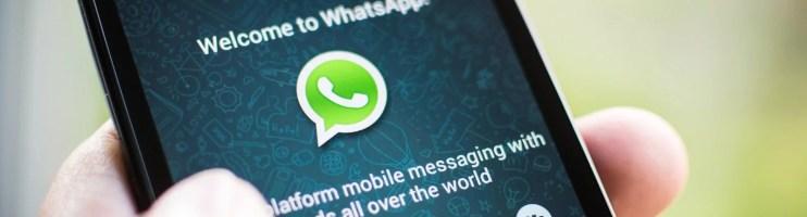 Como usar o Whatsapp para fazer seu Networking