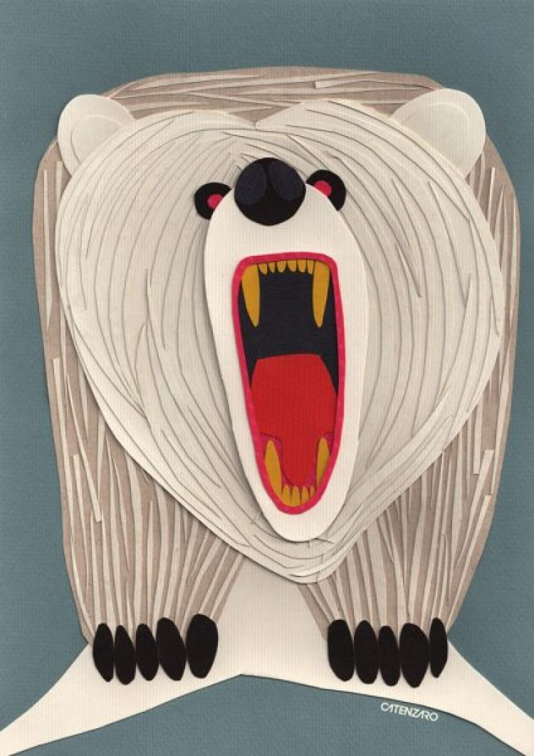 catenzaro-urso