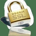 SSL-Web-Security