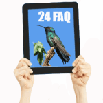 Top 24 FAQ on Google Hummingbird SEO Key Techniques