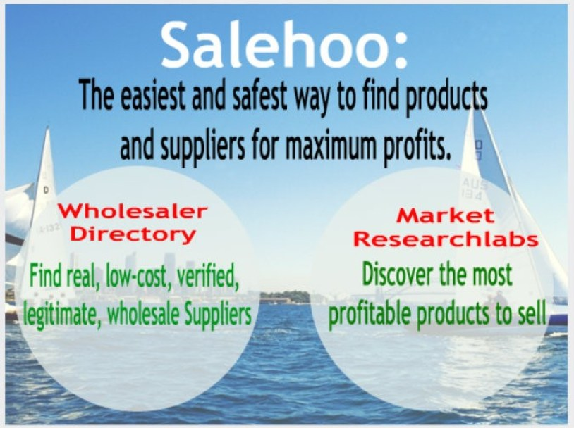 salehoo leverages Business