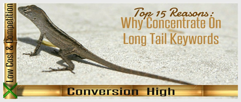 Long tail keyword search