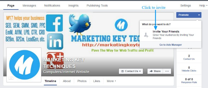 FB business fan page marketing