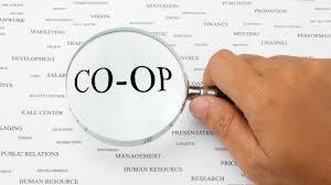 IM Global COOP