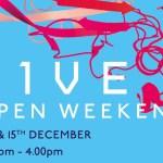 H1VE Open Weekend Dec 19