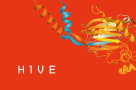 Dawn Creative chosen to deliver brand identity and website for HIVE fitness studio