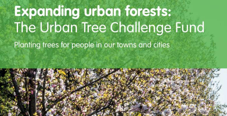 Urban Tree Challenge Fund
