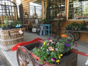Market Junction and Railway Cafe Antique and Artisan Market Cremona Alberta Summertime Explore Alberta tourism