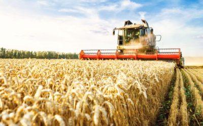 SEO Keywords for Farm Equipment Suppliers