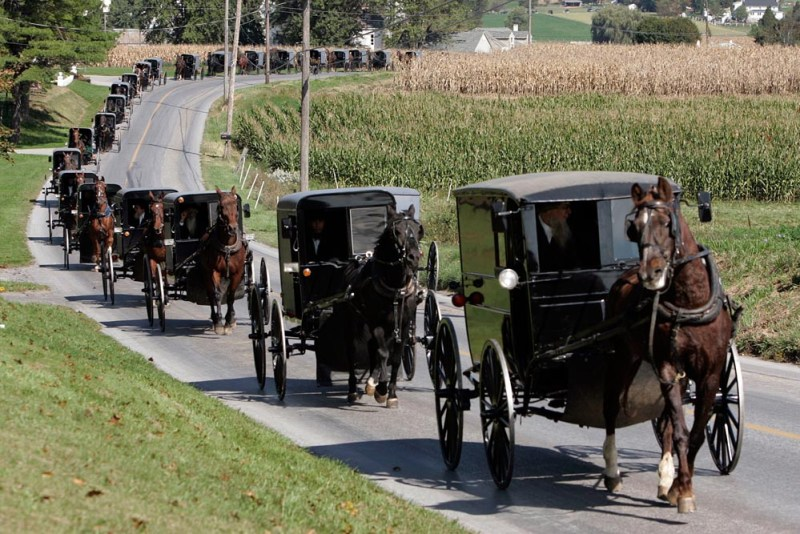 AMISH SHOOTING - 64-15-JOHNB-A-07.jpg - A horse and buggy Amish funeral procession move along Mine Road towards Bart Cemetery, after the service of Naomi Rose Ebersol the first of three services today for four of the victims in Bart Township, Lancaster County, Pa. on October 5, 2006.