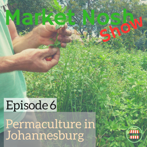 TMNSP 006 – Permaculture in Johannesburg