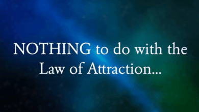 Photo of The Manifestation Millionaire | Law Of Attraction Blockbuster!