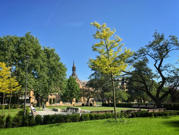 164/365 Be not afraid of laziness