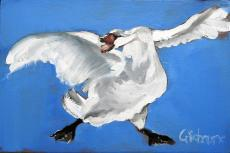A Swan Named Broadland art print