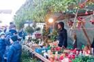 weihnachtsmarkt-am-lindle-009