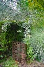 Garten Marguerite12