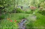 Garten Marguerite40