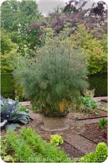 Garten Marguerite51