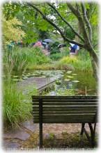 Garten Marguerite61