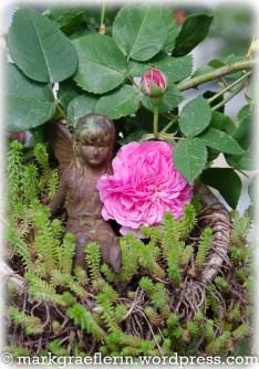 Garten Mai 8