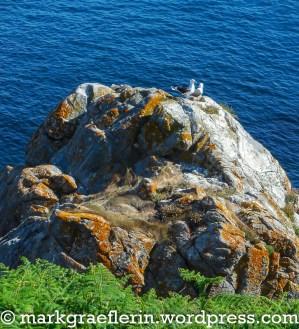 Bretagne Wanderung 2_5