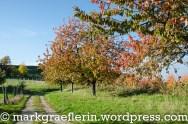 Herbstwanderung Eggenertal 9