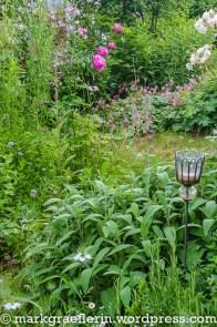 Garten Mai_Juni 19