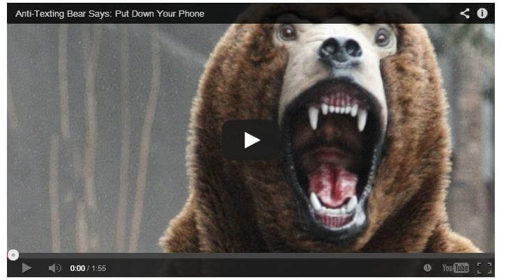 The Anti-texting bear