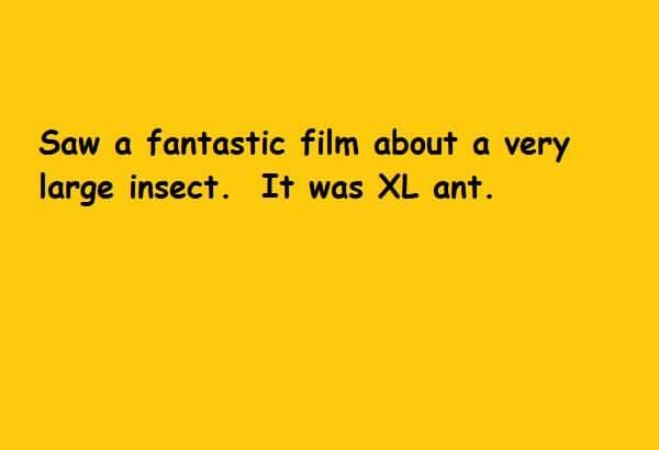 XL Ant