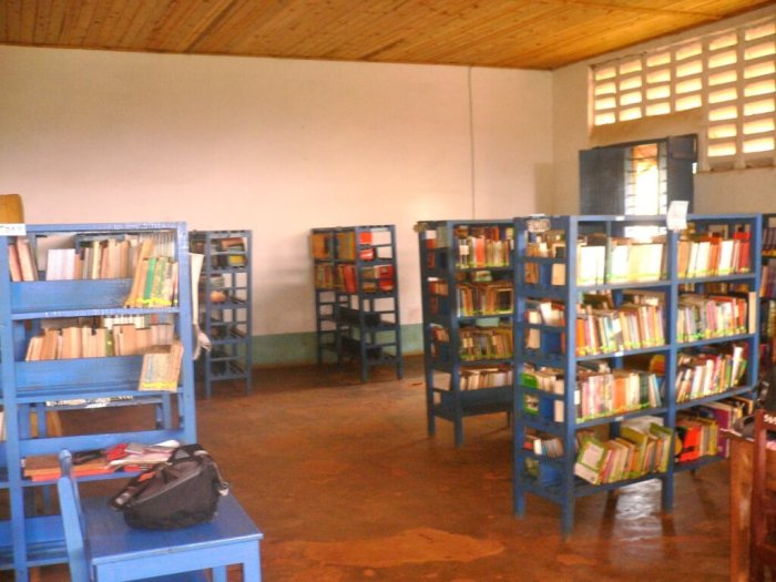 A library in a school in Tanzania