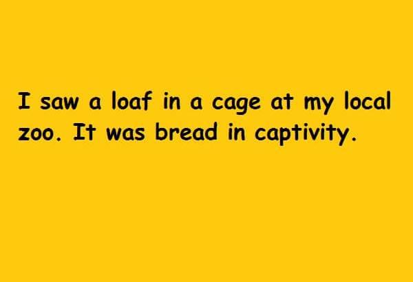 it was bread in captivity