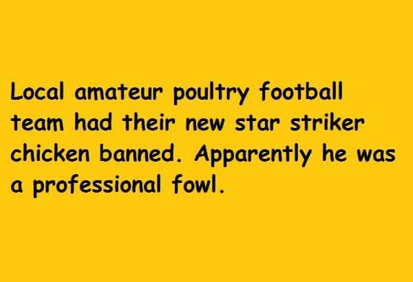 professional fowl
