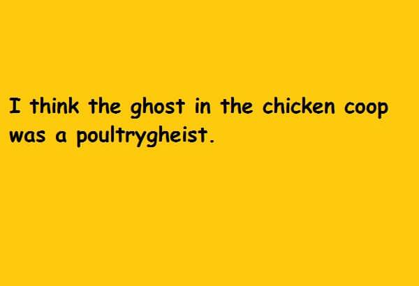 I think the ghost in the chicken coop was a poultrygheist
