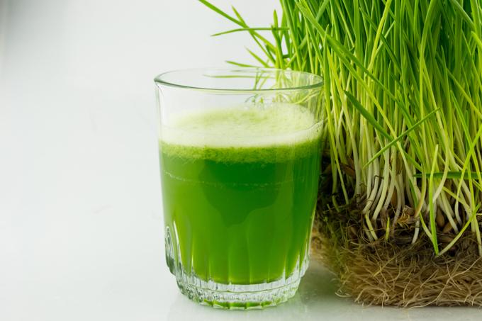 wheatgrass-juice-montreal