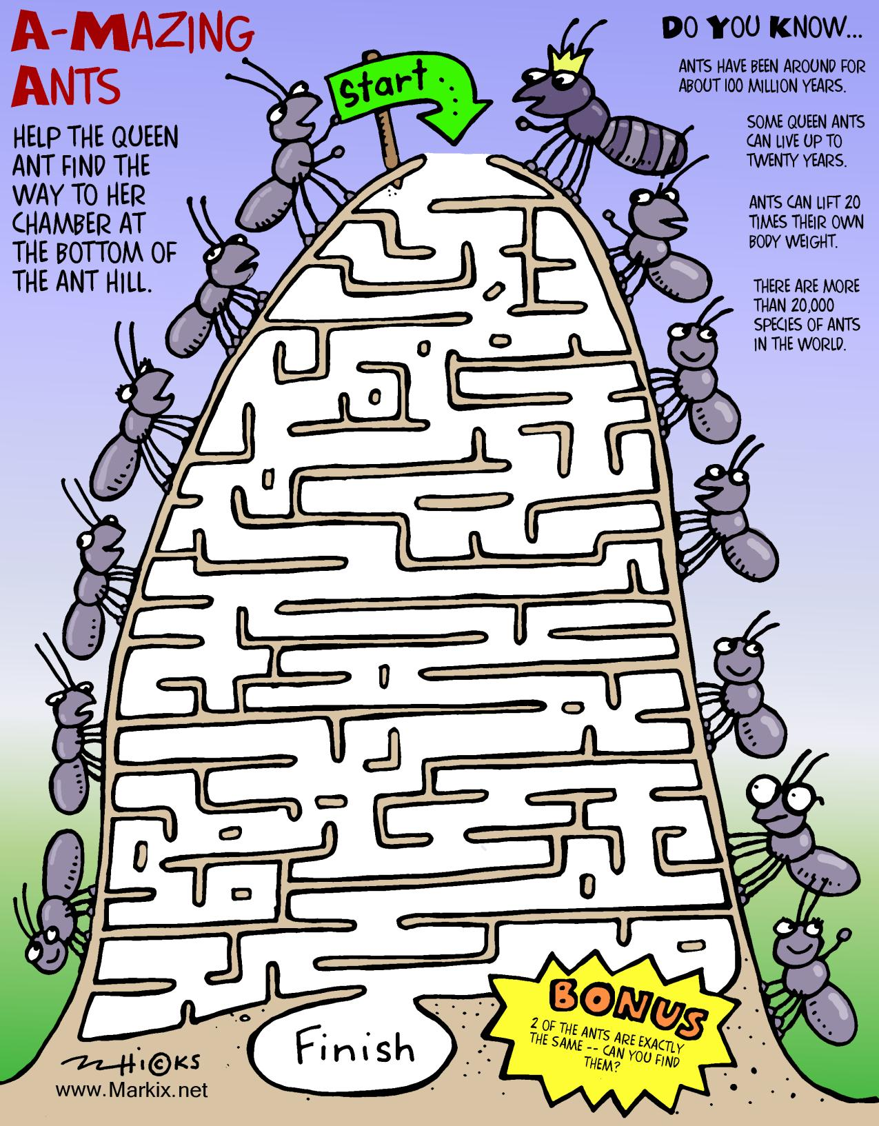 Ant Maze