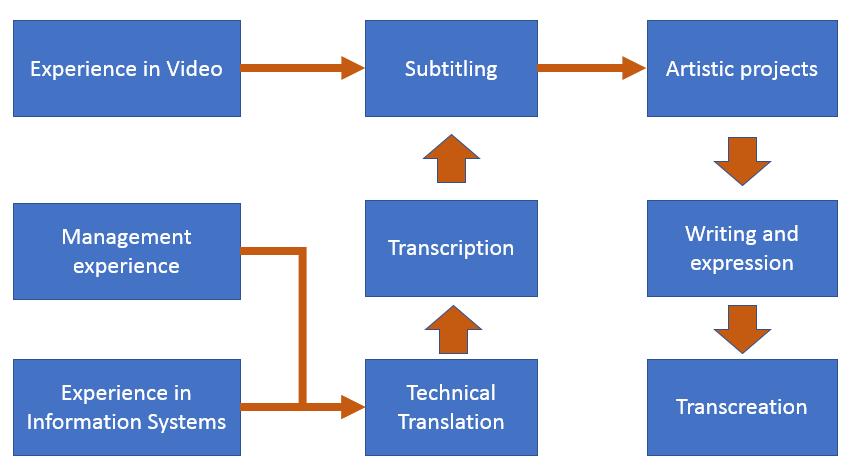 Expérience dans le domaine de la vidéo, de la gestion et des systèmes d'information
