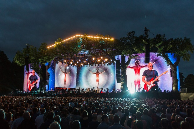 The Who - Live in Hyde Park Pic